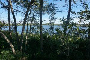 Antons Lake